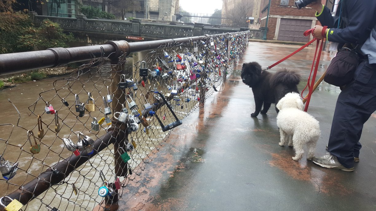 lovelocksontheriver